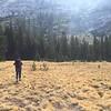 The next morning, approaching Tenaya Peak