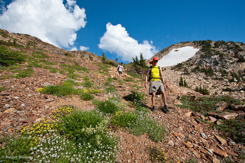 descending the scree field among wildflowers.