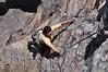 Tricia on Yellow Ridge