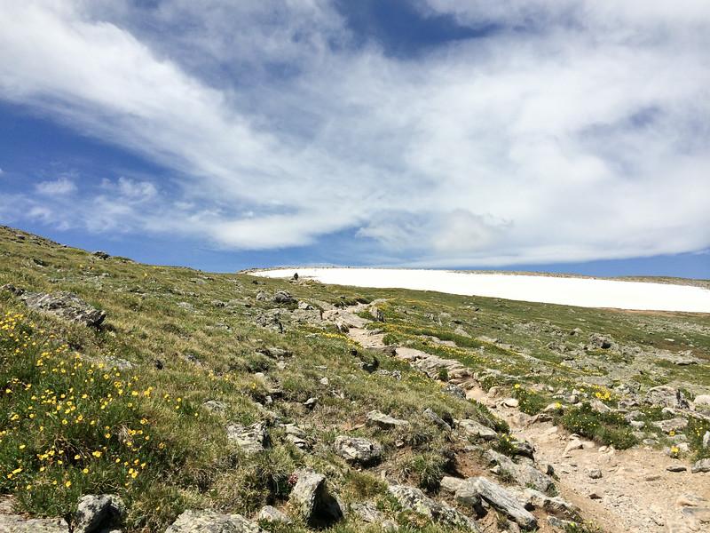 Snowfield on Flattop Mountain.