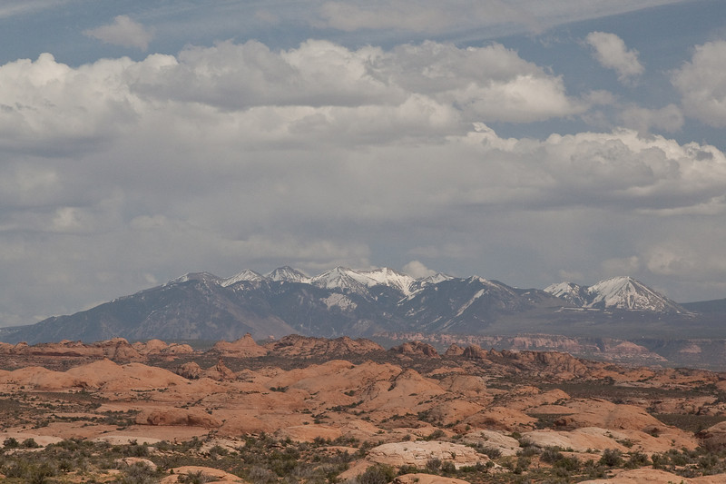 Petrified Sand Dunes with the La Sal Mountains in the background.