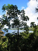 Kawakawa Bay is a 90 minute walk from Kinloch.  The only other access is by boat.