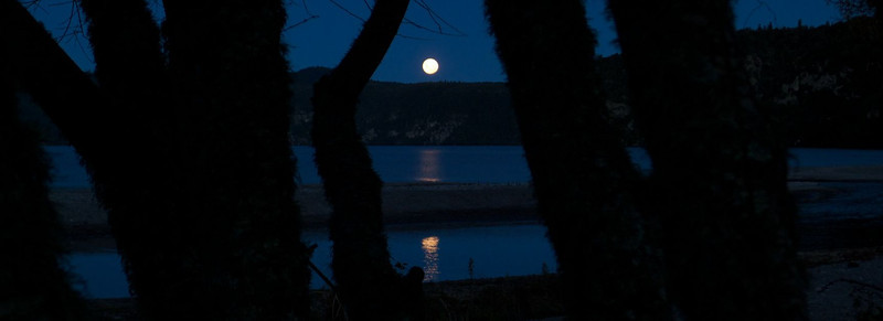 Moonrise over Whanganui Bay