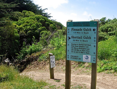 Pinnacle Gulch at Bodega Bay.