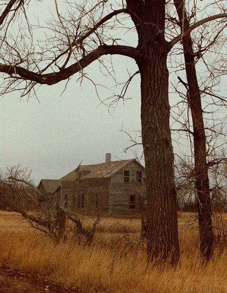 I-CO-Billy's_Homestead-YoungK