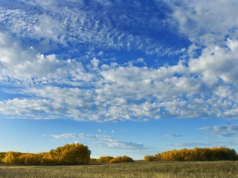A-CO-peacefull_autumn_morning-Hiscocks