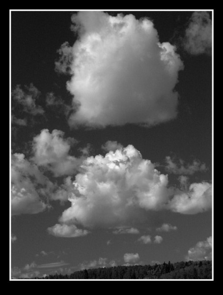 I-BW-Cottonball_Clouds-BuchananK