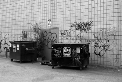 I-BW-Back_Alley_Graffiti-SuchanL