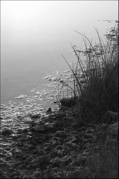 I-BW-Early_Morning_Frenchman's_River-HoltkampH
