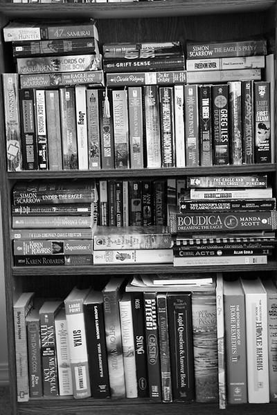I-BW-BookShelf Chaos-Valerie Ellis
