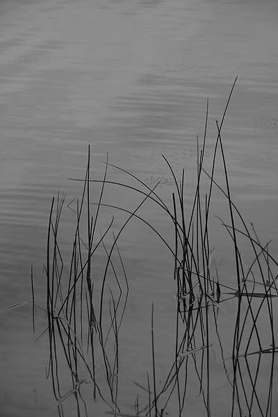 I-BW-Peaceful Water-Valerie Ellis-jpeg