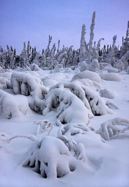 I-CO-Snowy_Peace-SmithT