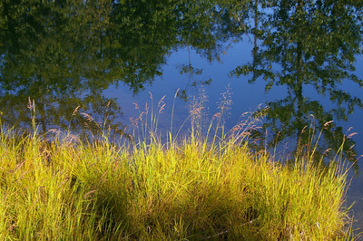 I-CO-A Moment by the Lake-Maitland-WhitelawL