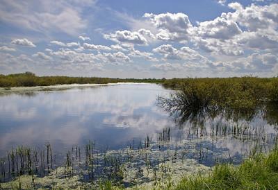 I-CR-Meditation on Open Water-Maitland-WhitelawL