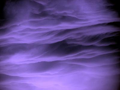 CR-Summer Storm-SchmidtS