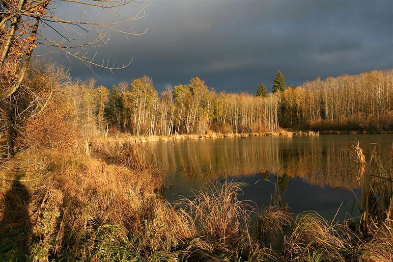 CO-Fall_Pond-McDonaldJ