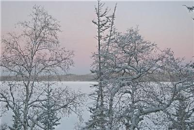 CO-Pastel Evening-Gordon Sukut