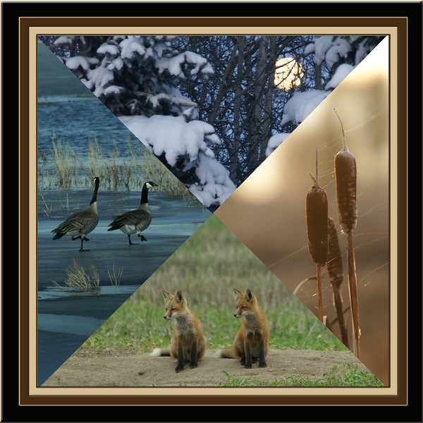 CR-Quarterly_Glimpse-WildemanA