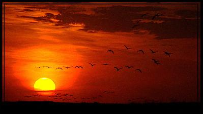 AR-Don't Let The Sun Go Down On Me-Amy Wildeman