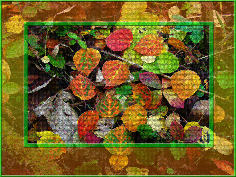 AR-Fall Colours-Howard Brown