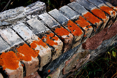 TR-Brick Symmetry-Emily Schindel