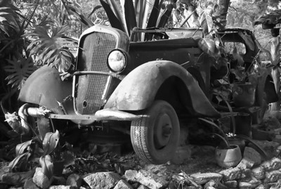 BW-Garden Junk-Bob Littlejohn