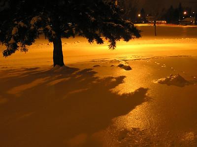 TR-Rain on Snow-Gayvin Franson