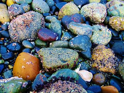 AR-True Colors-Tony Greenwood