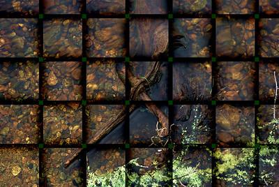 AR-Driftwood-Yolanda van Petten