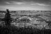 BW-Earths Texture-Ken Greenhorn