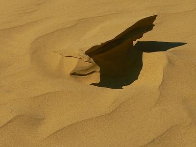 AR-Sand Dune Shadow-Howard Brown