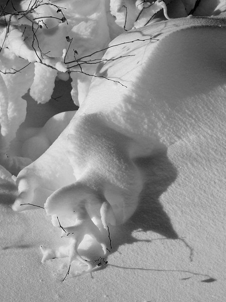 BW-Snow Sulpture-Howard Brown