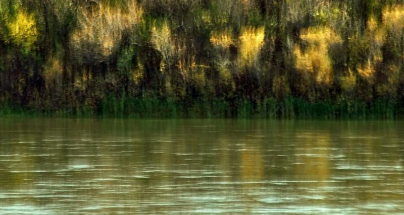 AR-River Dance-Sherry Duncan Paterson
