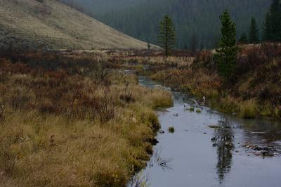 TR-Mountain Stream-Landis Maitland Whitelaw