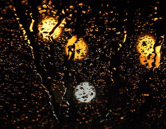 TR-Rain-Kathy Meeres