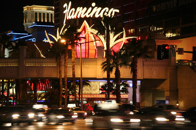 TR-Flamingo Lights-Valerie Ellis