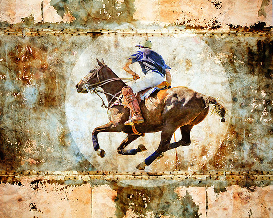 AR-Polo chase-Judy Wood