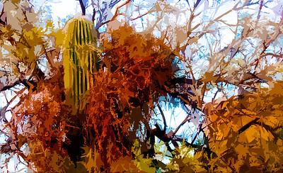 AR-Hosting The Saguaro-Nina Henry