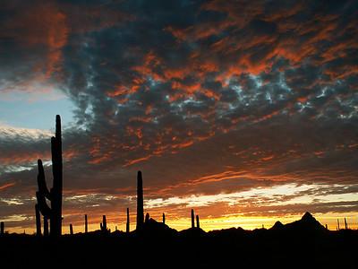 TR-Desert Sunset-Kathy Meeres