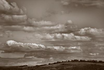 BW-Prairie rumble-Karen Pidskalny