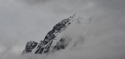 TR-Misty Mountain-Dale Read