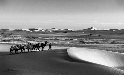 BW-Morning in the Gobi-Barry Singer