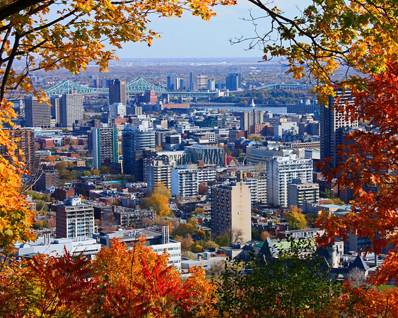Print-TR-Une Vue de Montreal-Howard Brown