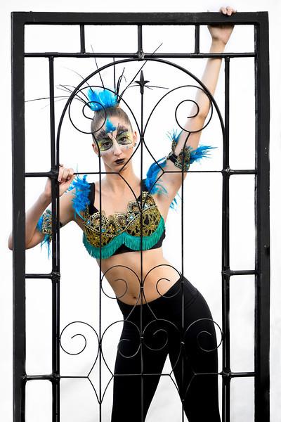 TR-Bird Cage-Ken Greenhorn