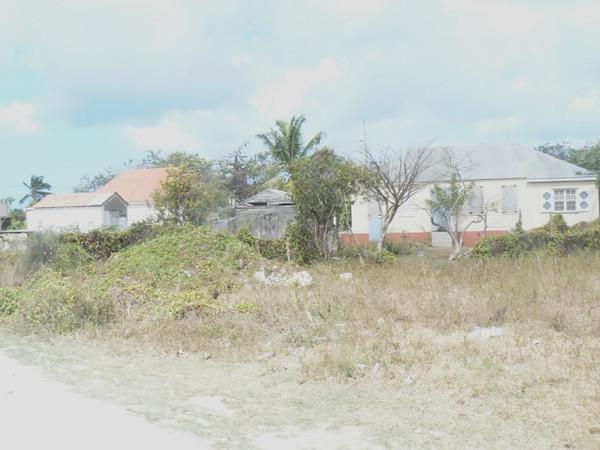 TR-Barbuda Heat-Brenda Maitland-Whitelaw