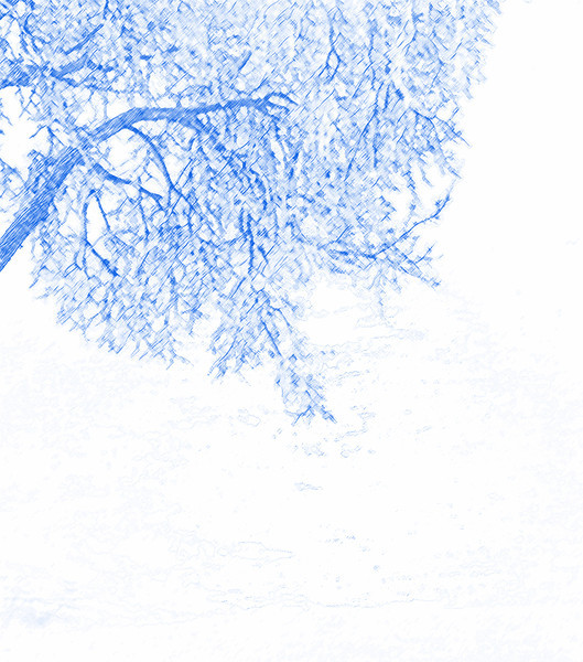 AR-Hanging Tree-Ian Sutherland