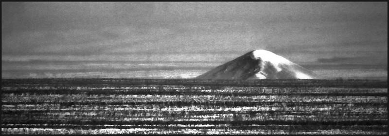 AR-Dune-Betty Calvert