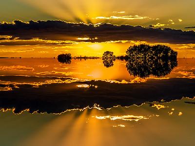 AR-On Golden Pond-Dale Read