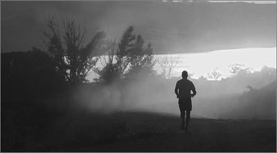 BW-Run, Forest, Run!-Betty Calvert