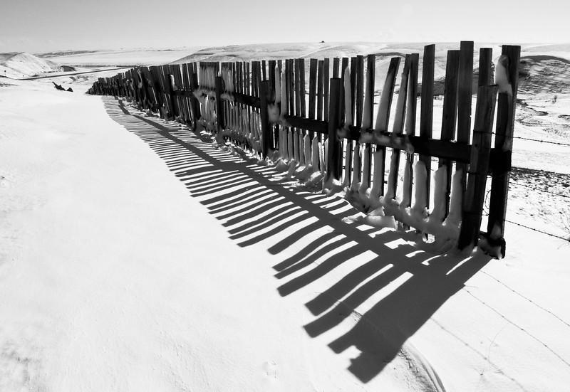 BW-Snow Fence-Kathy Meeres
